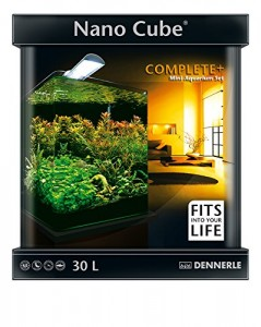 dennerle nanocube complete plus testbericht